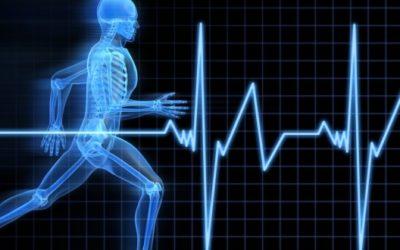 Cursos e intercâmbio nas áreas de Esporte e Ciência do Exercício Físico na Irlanda